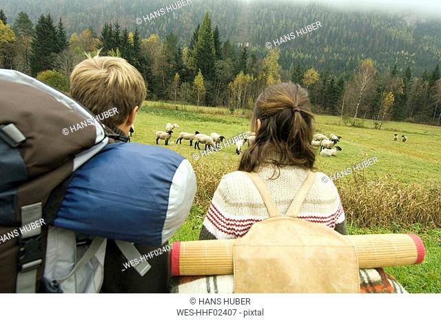 Austria, Salzburg County, Young couple and flock of sheep, rear view