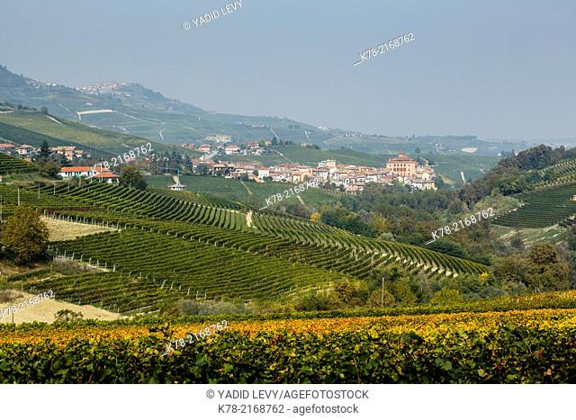 View over Barolo village and vineyards, Langhe, Cuneo district, Piedmont, Italy