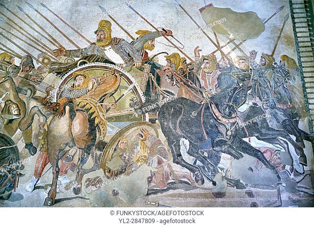 King Darius from the Roman mosaic of Battle beween Alexander the Great and Persian King Darius, 120-125 BC, Casa del Fauno, Pompeii, inv 10020