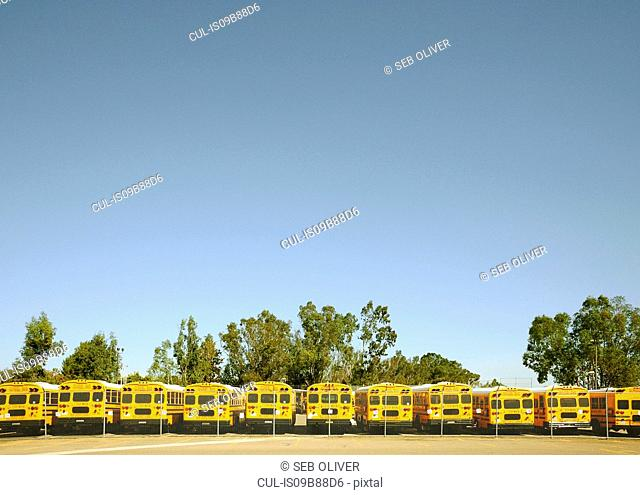 Row of yellow school buses in parking lot