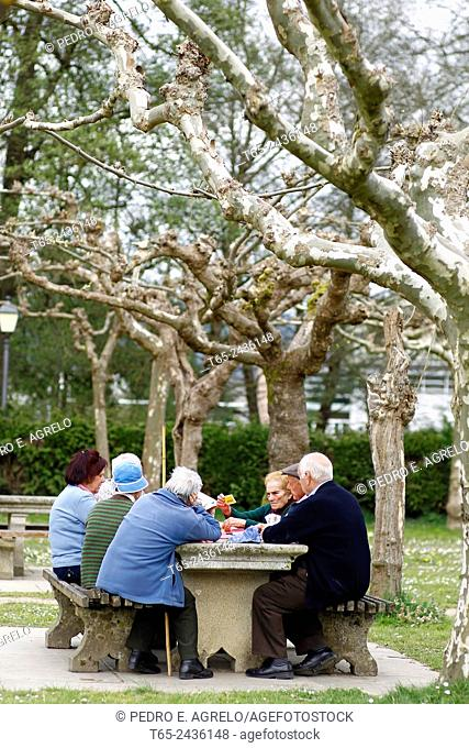 A group of old friends together daily in a park in Sarria, Lugo, to play a game of cards. Galicia, Spain