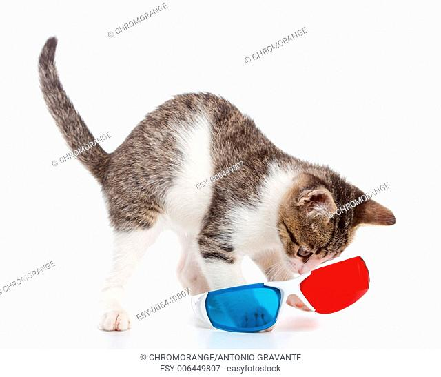 kitten paly with 3d glasses on white background