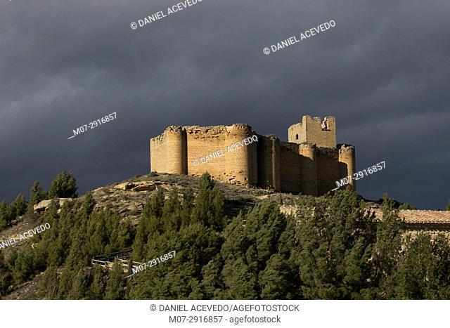 San Asensio, Davalillo castle and wine scape in spring time, La Rioja wine region, Spain, Europe