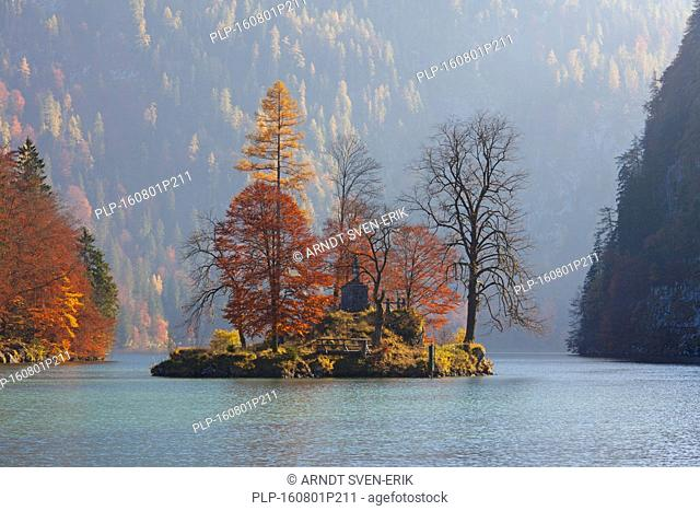 Island of Christlieger / Johannesinsel in the Königssee / Kings lake at Schönau am Königssee, Berchtesgaden national park, Bavaria, Germany