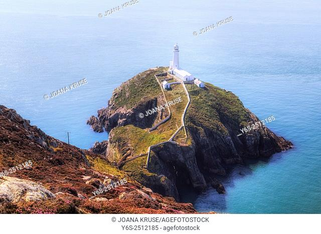 South Stack, Holy Island, Anglesey, Wales, United Kingdom