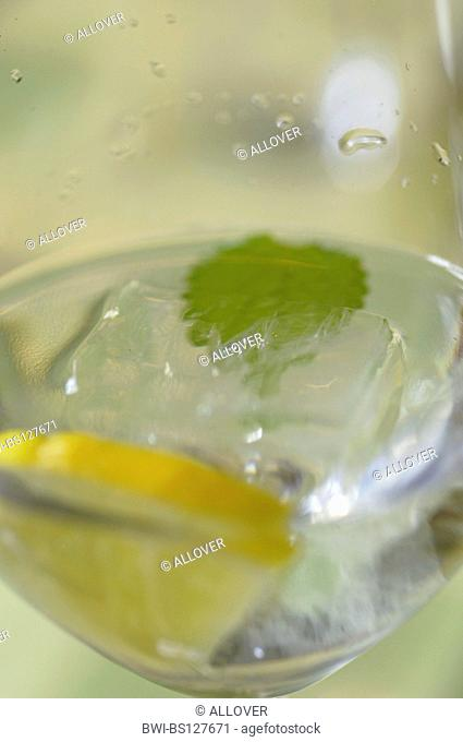 glass of water with lemon slice and mint leaf