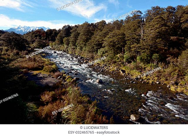 NATIONAL PARK, NZ - DEC 8 2014:Mahuia River, Tongariro National Park.Tongariro National Park was the fourth national park established in the world