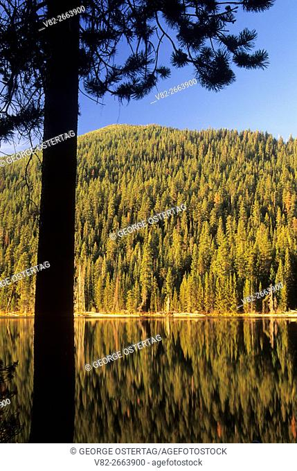 Little Cultus Lake, Cascade Lakes National Scenic Byway, Deschutes National Forest, Oregon