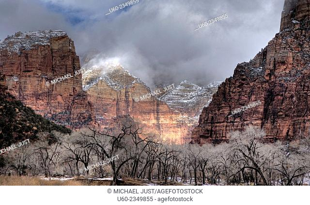 Fresh snow has fallen on the steep canyon walls at Zion National Park, Utah