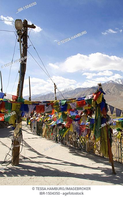 Tibetan Buddhist monastery with prayer flags in the Himalayan region near Leh, Ladakh, Himalaya, India, Asia