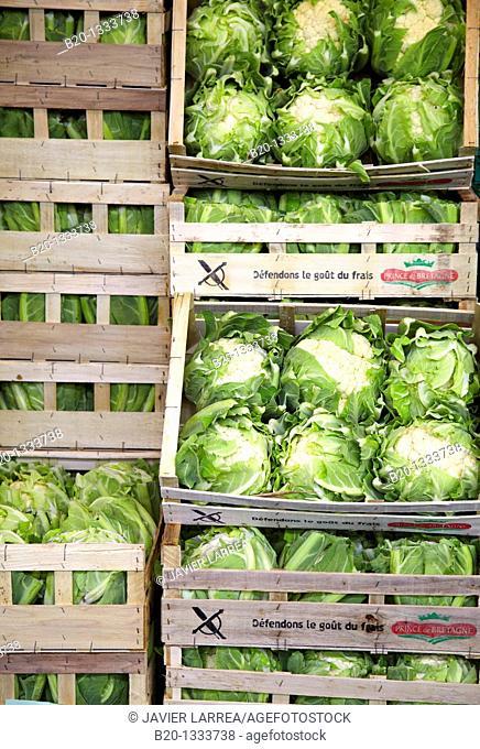 Cauliflowers, Mercabilbao fruits and vegetables wholesale market, Basauri, Bilbao, Bizkaia, Euskadi, Spain