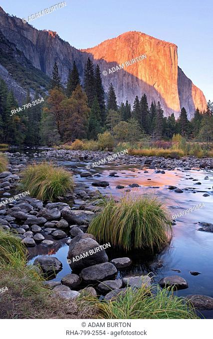 Evening sun setting on El Capitan above the Merced River, Yosemite Valley, Yosemite National Park, UNESCO World Heritage Site, California