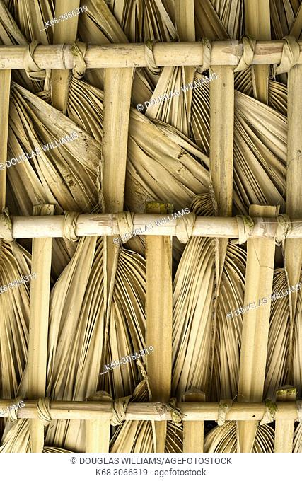 Thatch of palm leaves at a small retreat near San Agustinillo, Oaxaca, Mexico