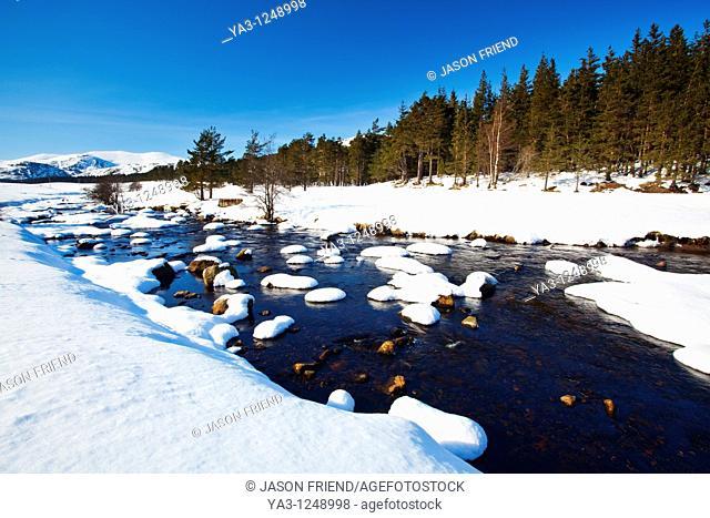 Scotland, Scottish Highlands, Cairngorms National Park  The snow covered River Muick running near a forest plantation in Glen Muick near Ballater