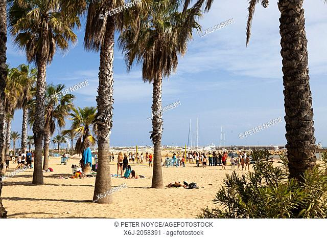 people under the palm trees on the beach at Salou