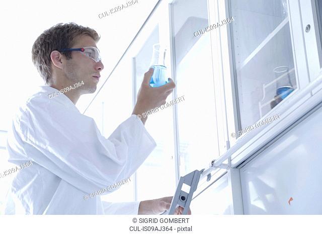 Male scientist scrutinizing erlenmeyer flask in lab