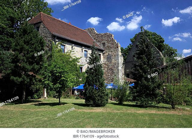 Burgruine Lichtenburg castle ruins at Ostheim vor der Rhoen, Rhoen-Grabfeld district, Lower Franconia, Bavaria, Germany, Europe