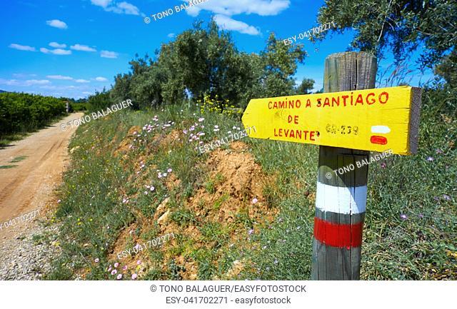 Camino de santiago Levante sign Saint James Way