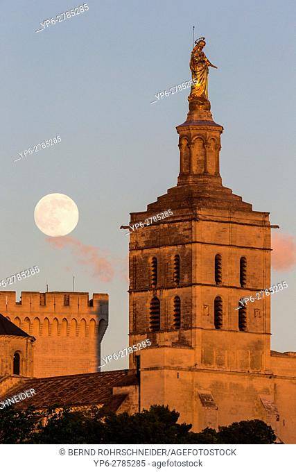 Papal palace (Palais des Papes) and cathedral Notre Dame at sunset with full moon, Avignon, France