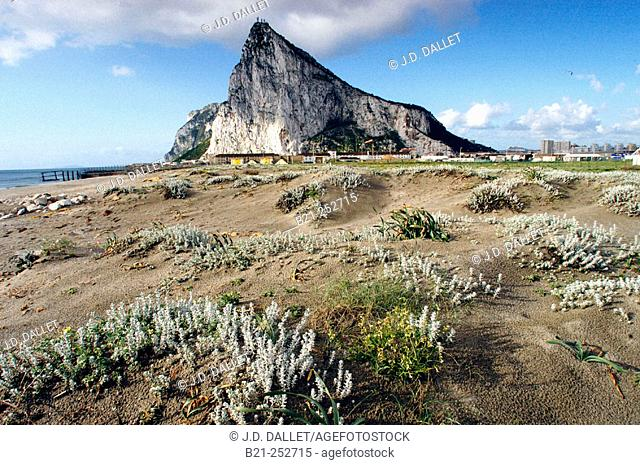 Rock of Gibraltar from Spanish border. Cádiz province. Spain