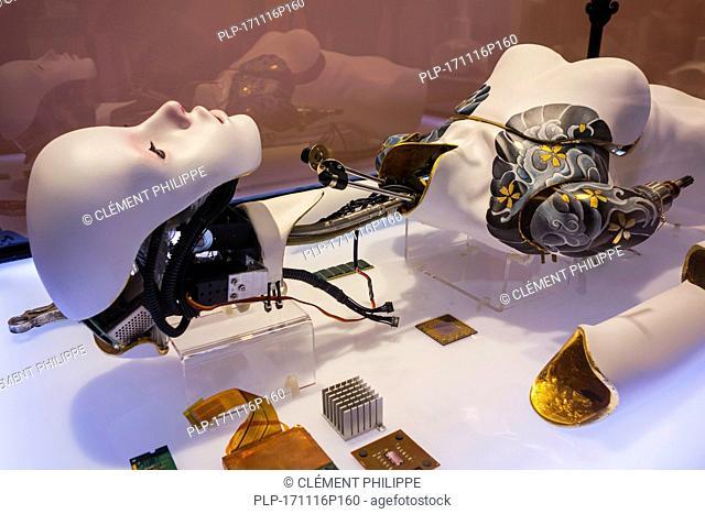 Installation The Waste, techno consumer culture where body parts are disposable