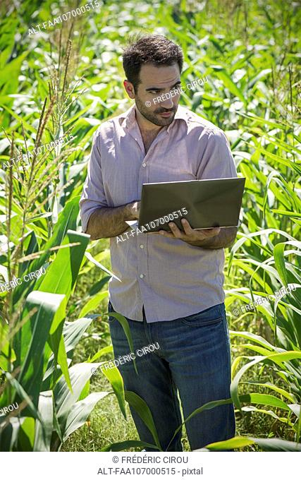 Scientist using laptop computer in field