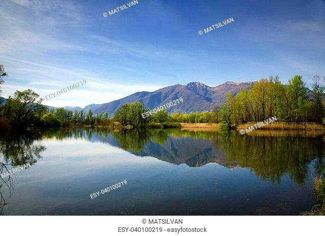 Mirror image on an alpine lake with trees and mountain