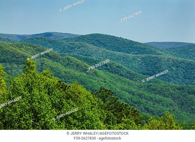 Mountains in the Cherokee National Forest, TN