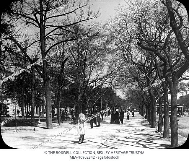Black and white lantern slide of a tree-lined avenue. There are cloaked people walking through the street. Slide number 22 of Box 148 entitled Spain Bull...