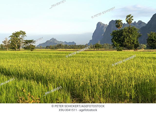 landscape with karst mountains and rice fields, Hpa-an, Hpa-an, Myanmar, Asia
