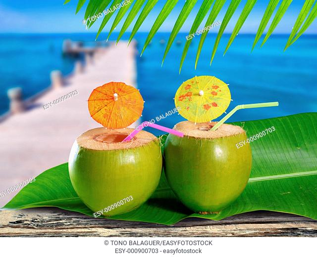 coconuts straw cocktails in tropical caribbean sea pier with boat