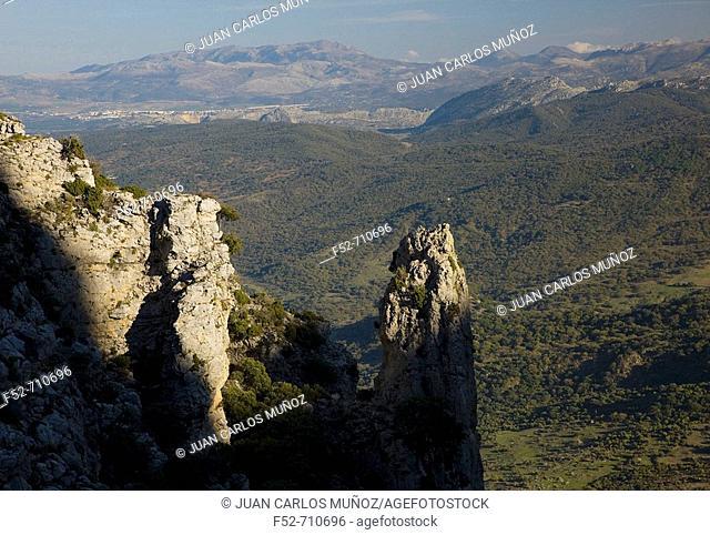 Ruta de los Pueblos Blancos. Sierra de Grazalema, Cadiz Province, Andalusia, Spain