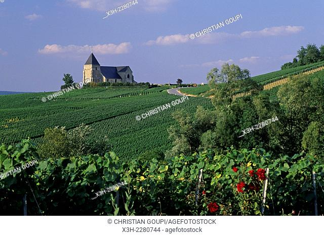 Saint-Martin Church of Chavot in Champagne vineyards, Marne department, Champagne-Ardenne region, France, Europe