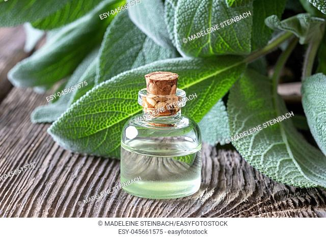 A bottle of essential oil with fresh sage leaves
