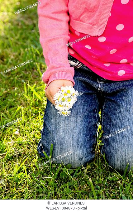 Little girl holding daisies in her hands, close-up