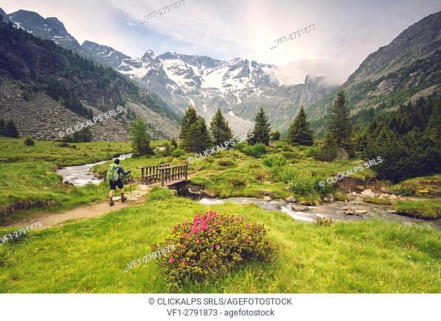 Europe, Italy, trekking in Adamello park, province of Brescia