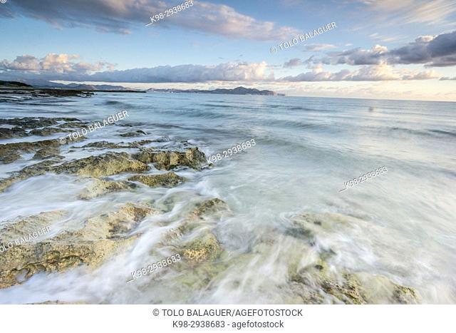 playa de Es Dolç y punta Llarga de Son Real, bahia de Alcudia, Santa Margarida, Mallorca, Balearic Islands, Spain