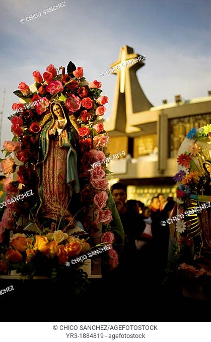 A pilgrim carries an image of the Our Lady of Guadalupe decorated with flowers outside of the Our Lady of Guadalupe Basilica in Mexico City, December 9, 2012