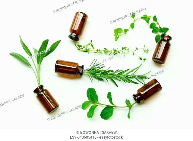 Top view, Bottle of essential oil with herbs sage, rosemary, oregano, mint and thyme
