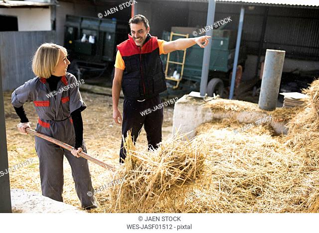 Couple working in stable, preparing hay
