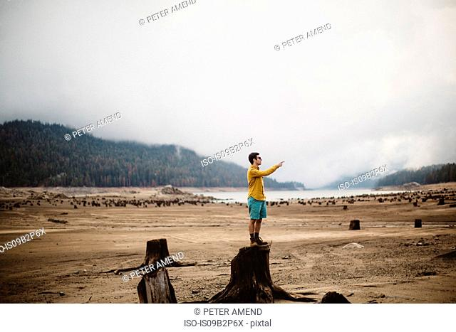 Young man standing on tree stump, pointing, Huntington Lake, California, USA