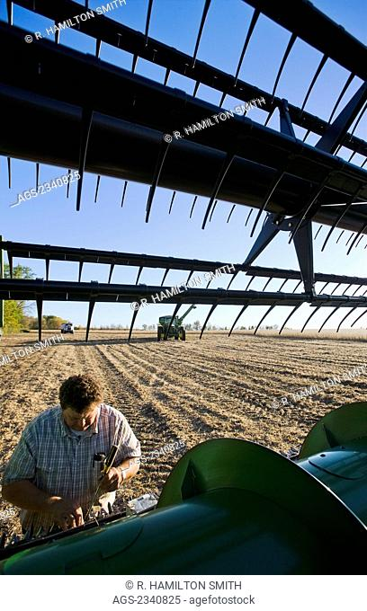 Agriculture - A farmer performs maintenance repairs in the field to his combine during the soybean harvest / near Northland, Minnesota, USA