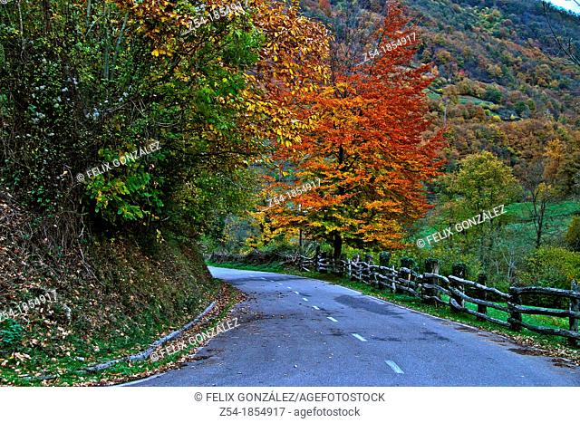 Road in autumn in Aller council, Asturias, Spain