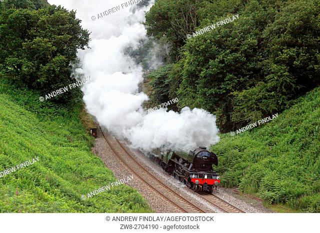 Steam train LNER A3 Class 4-6-2 no 60103 Flying Scotsman. Cowran Cut, Cowran Cutting, Brampton, Cumbria, England, United Kingdom, Europe