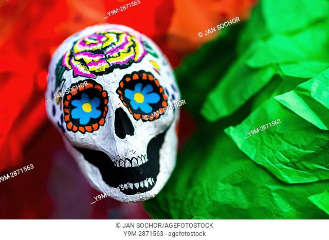 A painted scull made of paper is placed on an altar created in Mexican flag colors, situated on Plaza de Santo Domingo in Mexico City, Mexico, 28 October 2016