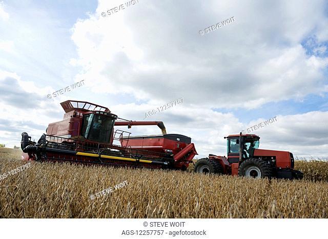 Soybean harvesting; Minnesota, United States of America