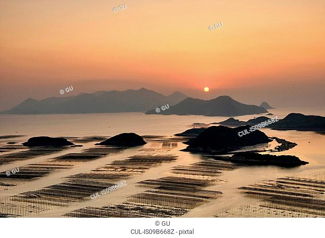 Rows of traditional fishing poles at sunrise, Huazhu, Fujian, China