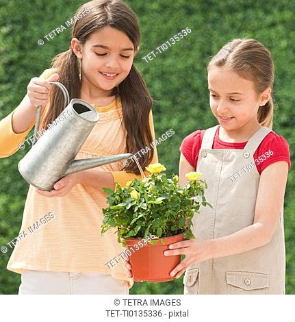 Two young girls watering a flower