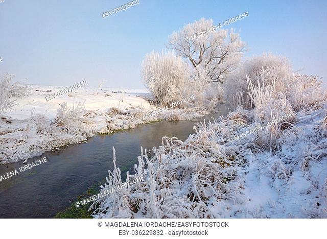 Frosty winter trees on countryside river