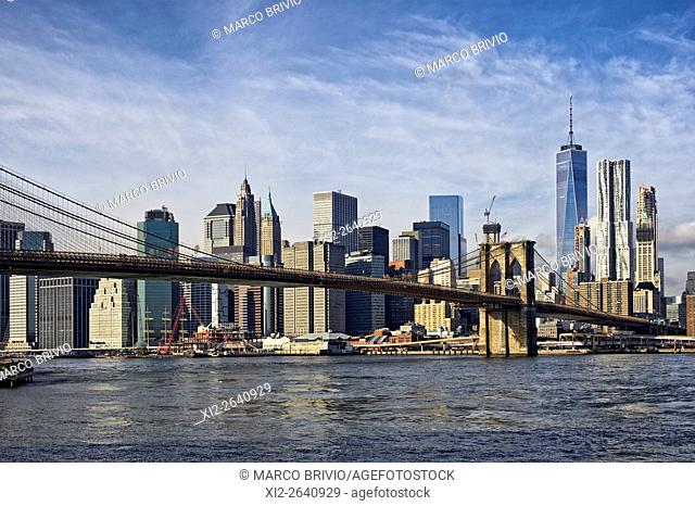 Brooklyn Bridge and Lower Manhattan in the background. New York City, USA
